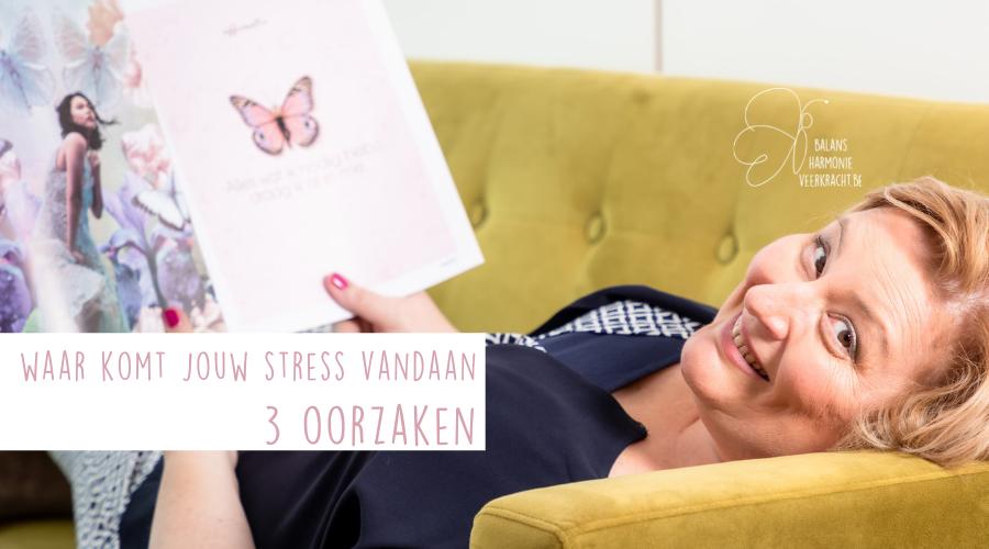 Blog - Intdek de 3 oorzaken van stress