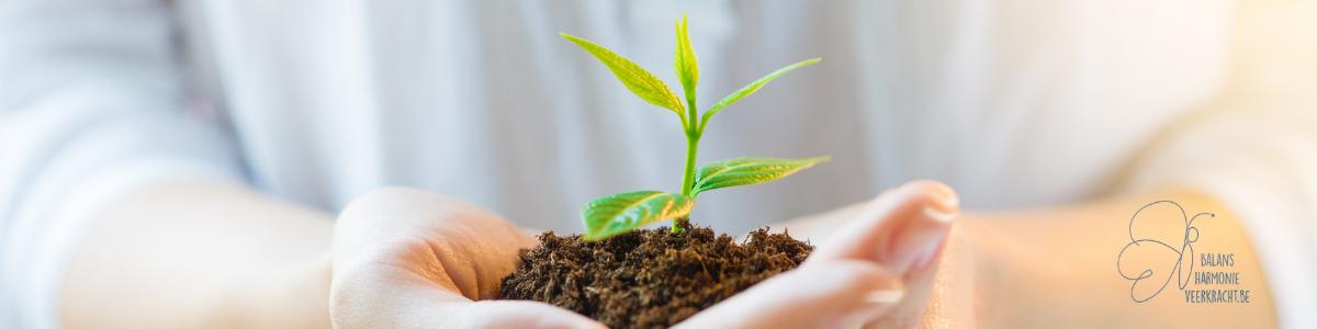 Persoonlijke groei - groeikracht - activeren - in het webinar ontdek je hoe