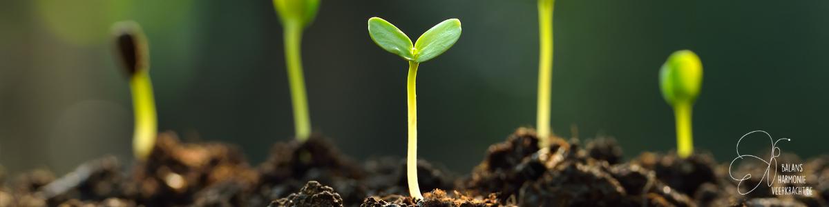 Persoonlijke groei is voor iedereen